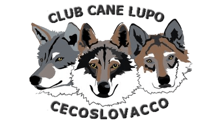 LOGO Club CLC